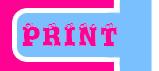 Print - Edition